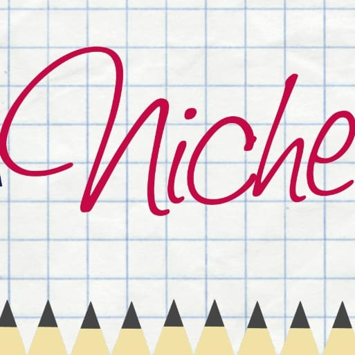 Developing a Niche for your Business