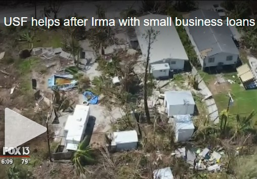 USF helps after Irma with small business loans